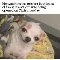 Anaconda, Christmas, and Love: Me watching the present I put loads  of thought and love into being  opened on Christmas day 100% me 😂😅