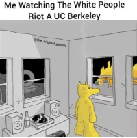 Memes, White People, and Popcorn: Me Watching The White People  Riot A UC Berkeley  @the original people Grabs popcorn 🍿 I wonder if they will be referred to as thugs 🤔 ucberkeley 17thsoulja BlackIG17th @geracme