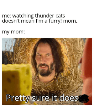 It's hard to watch some cartoons as an adult.: me: watching thunder cats  doesn't mean I'm a furry! mom.  my mom:  Pretty sure it does It's hard to watch some cartoons as an adult.