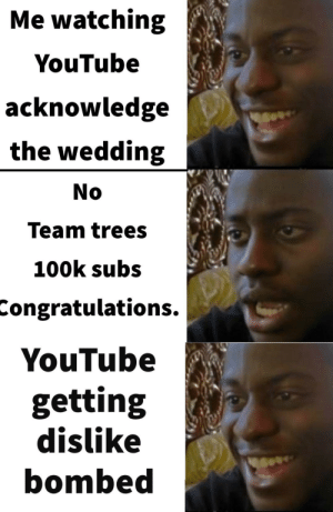 Raid the YouTube rewind dislike button 2019: Me watching  YouTube  acknowledge  the wedding  No  Team trees  100k subs  Congratulations.  YouTube  getting  dislike  bombed Raid the YouTube rewind dislike button 2019