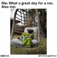 Memes, Run, and Animal: Me: What a great day for a run.  Also me:  BARK BOX  @homerpugalicious Props to going outside though 🙌 Fitness spirit animal via @homerpugalicious