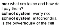 Memes, School, and Taxes: me: what are taxes and how do  I pay them?  school system: worry not  school system: mitochondria  is the powerhouse of the cell