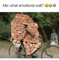 Internet, Memes, and Photoshop: Me: what emotional wall? If it's broken the internet in the past 6 months it was made by @adam.the.creator he is easily the most talented person on the gram. Do yourself a favor and follow him. His photoshop skills are beyond amazing and he's a fantastic human @adam.the.creator @adam.the.creator @adam.the.creator