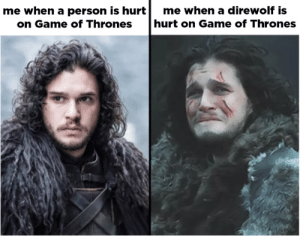 memehumor:100 GoT Memes You'll Only Find Funny If You're Caught Up And Ready For Season 7: me when a person is hurt  me when a direwolf is  hurt on Game of Thrones  on Game of Thrones memehumor:100 GoT Memes You'll Only Find Funny If You're Caught Up And Ready For Season 7