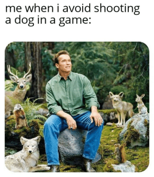 Game, A Game, and Doggo: me when i avoid shooting  a dog in a game: No kill doggo