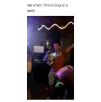 Best friends forever: me when i find a dog at a  party Best friends forever