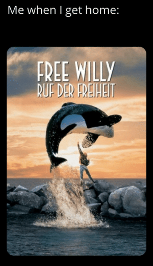 It's power cannot be contained!!!: Me when I get home:  FREE WILLY  BUF DER FREIHEIT It's power cannot be contained!!!