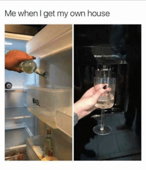 Dank, Life, and House: Me when I get my own house  Water Dispence  45L Living the life.