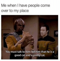 Come Over, Good, and Wholesome: Me when I have people come  over to my place  You must talk to him. Tell him that he is a  good cat and a pretty cat. <p>wholesome apartments :)</p>