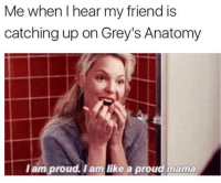 Memes, Grey's Anatomy, and Proud: Me when I hear my friend is  catching up on Grey's Anatomy  l am proud. I am like a proud mama this is me 😂 https://t.co/3PeSjhSEtu