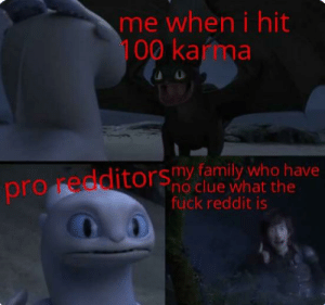 Family, Memes, and Reddit: me when i hit  100 karma  O  pro redditorsmy family who have  no clue what the  fuck reddit is Memes are fun