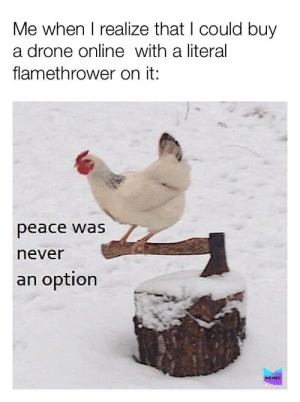 Drone: Me when I realize that I could buy  a drone online with a literal  flamethrower on it:  peace was  never  an option  MEMES