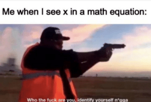 Well? Who are you?: Me when I see x in a math equation:  Who the fuck are you, identify yourself n*gga Well? Who are you?