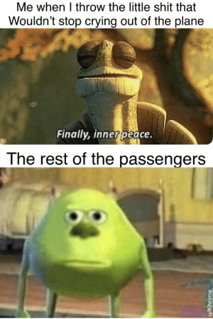 In actuality that have now obtained inner price as well.: Me when I throw the little shit that  Wouldn't stop crying out of the plane  Finally, innerpeace.  The rest of the passengers  u/Khrime In actuality that have now obtained inner price as well.