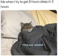 "Bullshit, Sleep, and Irl: Me when I try to get 8 hours sleep in 3  hours  ""This sum bullshit."" Me irl"