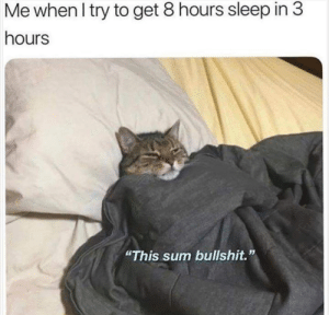 """Dank, Memes, and Target: Me when I try to get 8 hours sleep in 3  hours  """"This sum bullshit."""" Me irl by TheRealLeoArmstrong MORE MEMES"""