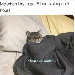 "Sleep In: Me when I try to get 8 hours sleep in 3  hours  ""This sum bullshit."""