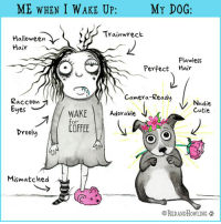 Halloween, Memes, and Camera: ME WHEN I WAKE UP  MY DOG:  Trainwreck  Halloween  Hair  Flawless  Perfect Hair  Camera-Ready  Kaccoon  Nudie  Cutie  WAKE Adorable  COFFEE  oF  rool  Mismatched  0  REDANDHOwLING
