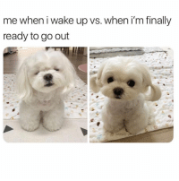 Girl Memes, Wake, and Glow: me when i wake up vs. when i'm finally  ready to go out Glow up ✨✨✨