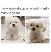 Funny, Memes, and Wake: me when i wake up vs. when i'm finally  ready to go out SarcasmOnly