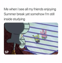 Friends, Summer, and Break: Me when l see all my friends enjoying  Summer break yet somehow I'm still  inside studying  SP Why 😭