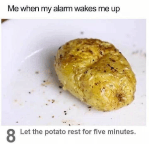60 Funny Food Memes That'll Keep You Laughing For Hours - JustViral.Net: Me when my alarm wakes me up  Let the potato rest for five minutes. 60 Funny Food Memes That'll Keep You Laughing For Hours - JustViral.Net