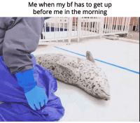 "Via, Pls, and Href: Me when my bf has to get up  before me in the morning <p>moar morning cuddling pls via /r/wholesomememes <a href=""https://ift.tt/2uQu9XT"">https://ift.tt/2uQu9XT</a></p>"
