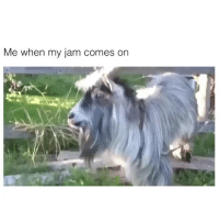 Memes, New York, and Wshh: Me when my jam comes on In New York I Milly Rock 😎💯🗽 WSHH @playboicarti