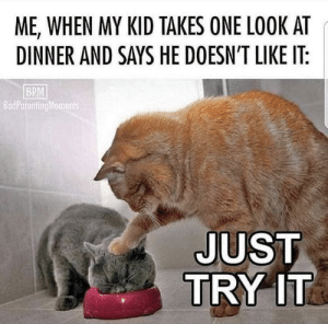 Bruh, Terrible Facebook, and Bpm: ME, WHEN MY KID TAKES ONE LOOK AT  DINNER AND SAYS HE DOESN'T LIKE IT:  BPM  BadParentingMoments  JUST  TRY IT Bruh