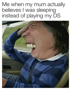 James May, Memes, and Sleeping: Me when my mum actually  believes I was sleeping  instead of playing my DS We need more James May memes