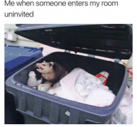 Memes, Mondays, and Possum: Me when someone enters my room  uninvited Mondays are rough for everyone, so have some memes to cure your rage! #Mondays #RandomMemes #FunnyMemes #Possum #AnimalMemes
