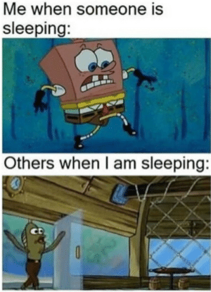 Target, Tumblr, and Blog: Me when someone is  sleeping:  Others when I am sleeping:  CD wally-jo:whoever made this was a cancer