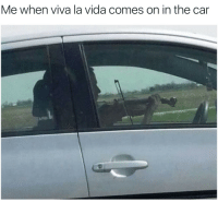 Car, Viva La Vida, and The Car: Me when viva la vida comes on in the car