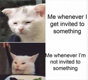 Me irl: Me whenever  get invited to  something  Me whenever I'm  not invited to  something Me irl