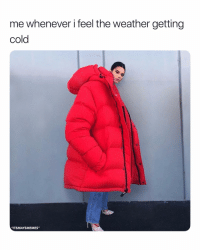"""Facts, The Weather, and Weather: me whenever i feel the weather getting  cold  """"ITSMAYSMEMES"""" facts"""