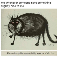 Wow I've never related this much to a meme before: me whenever someone says something  slightly nice to me  Unusually repulsive cat startled by a gesture of affection Wow I've never related this much to a meme before