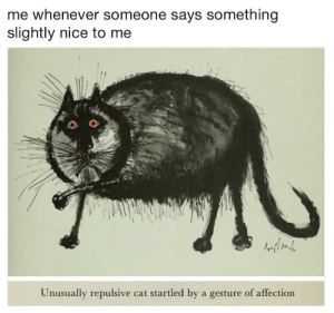 Me irl by smallnpo FOLLOW HERE 4 MORE MEMES.: me whenever someone says something  slightly nice to me  Unusually repulsive cat startled by a gesture of affection Me irl by smallnpo FOLLOW HERE 4 MORE MEMES.