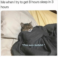 "Humans of Tumblr, Bullshit, and Sleep: Me whenl try to get 8 hours sleep in 3  hours  ""This sum bullshit."""