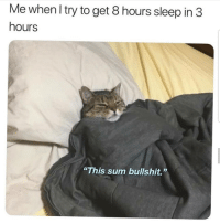"""B.S 🙄🙄🙄😂😂 🔥 Follow Us 👉 @latinoswithattitude 🔥 latinosbelike latinasbelike latinoproblems mexicansbelike mexican mexicanproblems hispanicsbelike hispanic hispanicproblems latina latinas latino latinos hispanicsbelike: Me whenl try to get 8 hours sleep in3  hours  """"This sum bullshit."""" B.S 🙄🙄🙄😂😂 🔥 Follow Us 👉 @latinoswithattitude 🔥 latinosbelike latinasbelike latinoproblems mexicansbelike mexican mexicanproblems hispanicsbelike hispanic hispanicproblems latina latinas latino latinos hispanicsbelike"""