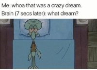 Crazy, Brain, and Good: Me: whoa that was a crazy dream  Brain (7 secs later): what dream? Can never remember the good ones