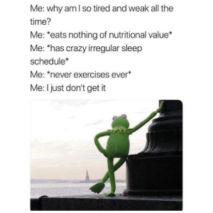 Crazy, Quite, and Schedule: Me: why am l so tired and weak all the  time?  Me: *eats nothing of nutritional value*  Me: has crazy irregular sleep  schedule  Me: *never exercises ever  Me: I just don't get it I just don't quite get it. (i.redd.it)