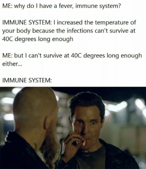 Immune: ME: why do I have a fever, immune system?  IMMUNE SYSTEM: I increased the temperature of  your body because the infections can't survive at  40C degrees long enough  ME: but I can't survive at 40C degrees long enough  either...  IMMUNE SYSTEM: