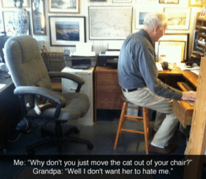 "Tumblr, Grandpa, and Blog: Me: ""Why don't you just move the cat out of your chair?""  Grandpa: ""Well I don't want her to hate me."" srsfunny:  Just Move The Cat"