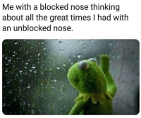 Me To Me: Me with a blocked nose thinking  about all the great times I had with  an unblocked nose.