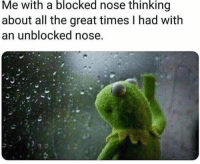 All The, All, and Times: Me with a blocked nose thinking  about all the great times I had with  an unblocked nose,