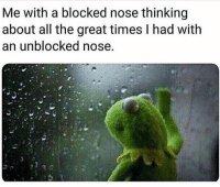 The Worst, Hood, and All The: Me with a blocked nose thinking  about all the great times I had with  an unblocked nose. The worst!👃😂