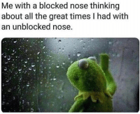 Memes, Science, and All The: Me with a blocked nose thinking  about all the great times I had with  an unblocked nose, Join our group: Science Memes