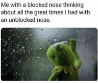 Memes, All The, and 🤖: Me with a blocked nose thinking  about all the great times I had with  an unblocked nose https://t.co/wMDUfDzecb