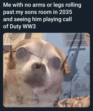 Meirl: Me with no arms or legs rolling  past my sons room in 2035  and seeing him playing call  of Duty WW3 Meirl