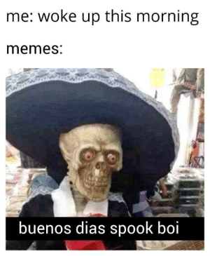 Spooked: me: woke up this morning  memes:  buenos dias spook boi Spooked